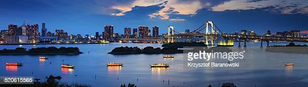 Tokyo Bay Panorama with Boats