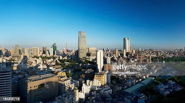 Tokyo bird-eyes view in morning