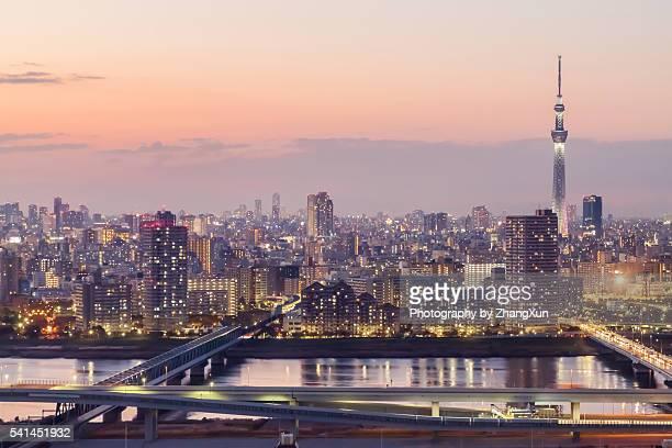 Tokyo city, Japan at night over Tokyo Bay.