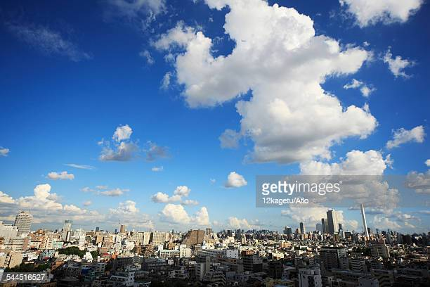 Tokyo Cityscape And Sky