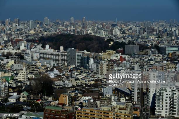 Tokyo Cityscape / Bunkyo Ward Area
