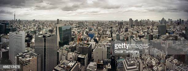 Tokyo cityscape panorama