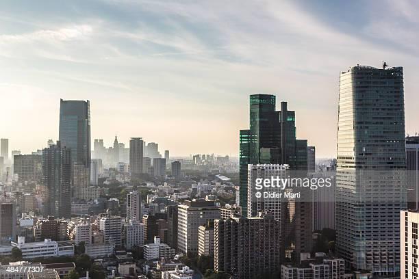 Tokyo cityscape - Roppongi and Shinjuku