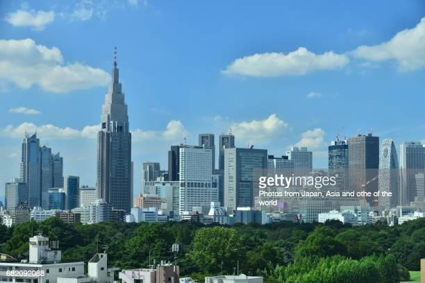 Tokyo Cityscape / Shinjuku Skyline