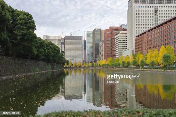 tokyo cityscape-kokyogaien national gardens - liyao xie bildbanksfoton och bilder
