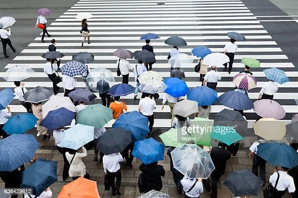 Tokyo Crosswalk Scene on a Rainy Day