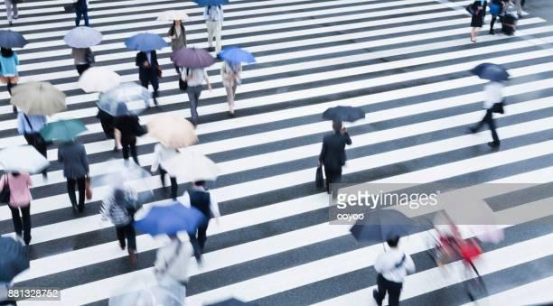 tokyo crosswalk scene on a rainy morning - zebra crossing stock photos and pictures
