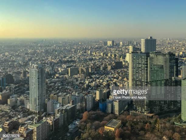 tokyo december afternoon - 東京都庁舎 ストックフォトと画像