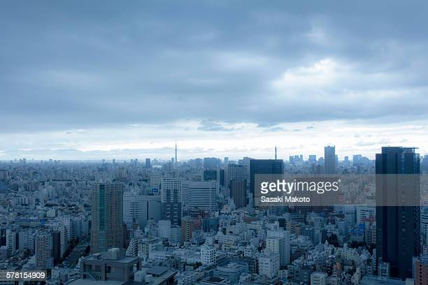 Tokyo distant view of a cloudy day