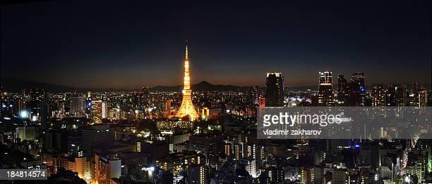 Tokyo Downtown at night  Panorama