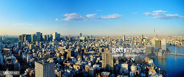 Tokyo Downtown Panorama