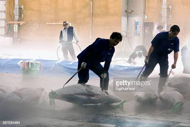 mercado de pescados de la ciudad de tokyo - sashimi fotografías e imágenes de stock