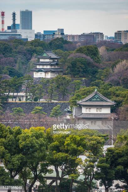 tokyo imperial palace and gardens below city skyline japan - imperial palace tokyo stock photos and pictures