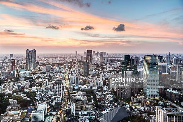 Tokyo in sunset