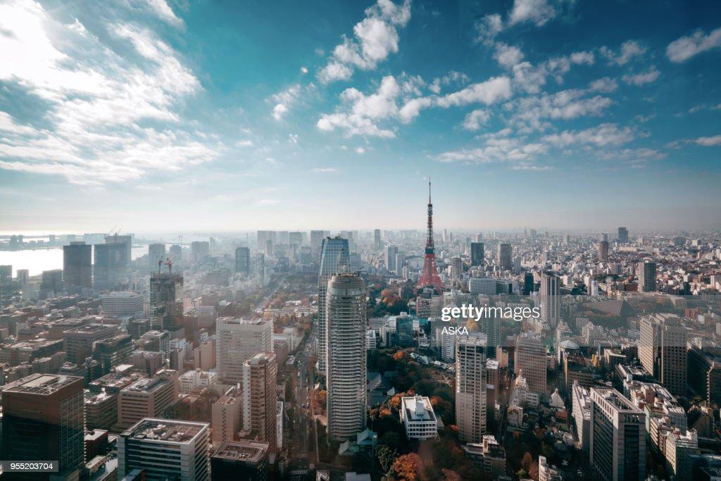 Tokyo, Japan Skyline : Foto de stock