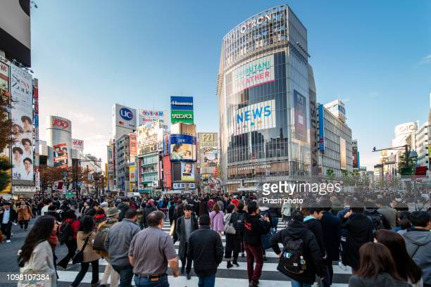 tokyo, japan view of shibuya crossing, one of the busiest crosswalks in tokyo and in the world - shibuya ward stock pictures, royalty-free photos & images