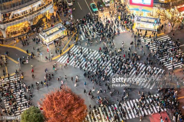 tokyo, japan view of shibuya crossing, one of the busiest crosswalks in tokyo and in the world at night. - tokyo japan stock pictures, royalty-free photos & images