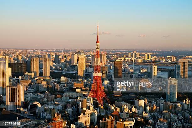 Tokyo landmark near sunset