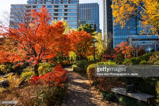 tokyo landscape - tokyo midtown stock pictures, royalty-free photos & images