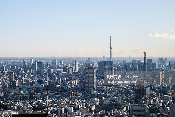 Tokyo morning view