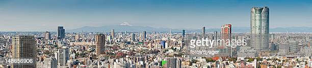 Tokyo Mt Fuji overlooking skyscrapers crowded cityscape panorama Roppongi Japan
