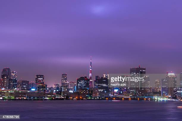 Tokyo night view on purple cloudy day
