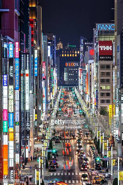 Tokyo Panorama at night. Elevated view along Chuo-dori.