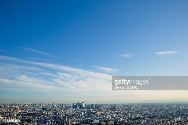 tokyo panorama - 離れた ストックフォトと画像