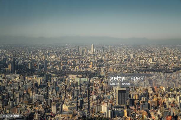 tokyo - mauro tandoi stock pictures, royalty-free photos & images