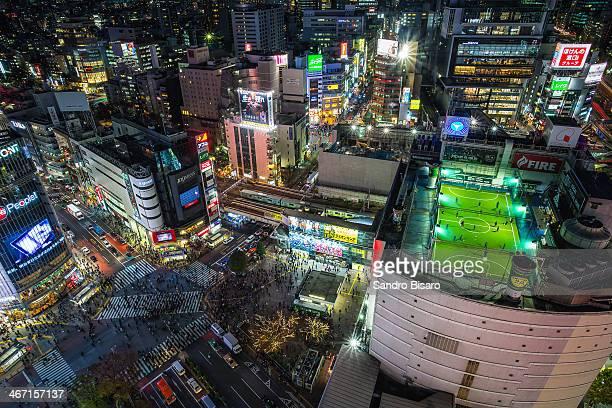 Tokyo Shibuya Crossing at night skyline