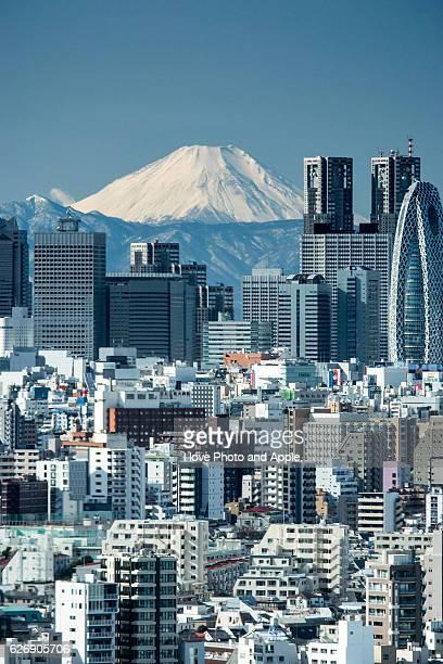 Tokyo Shinjuku and Fuji