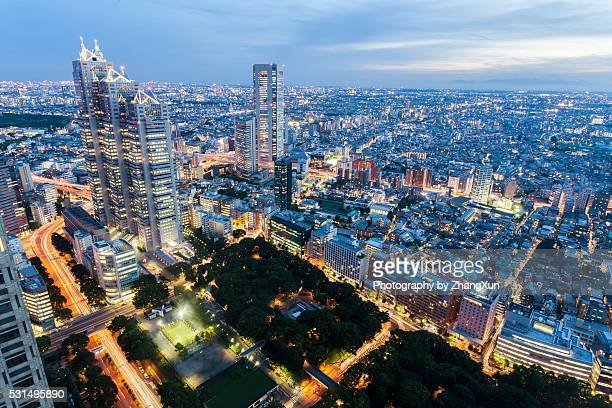 Tokyo Shinjuku area Twilight aerial view, Japan.