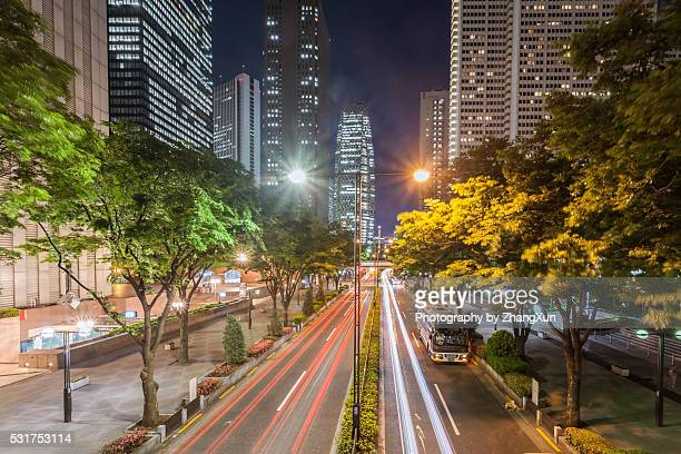 Tokyo Shinjuku area Twilight view, Japan.