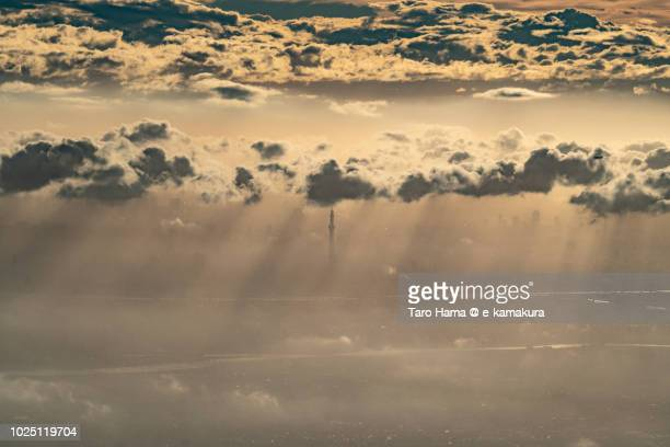 Tokyo Sky Tree in the sunset clouds sunset time aerial view from airplane