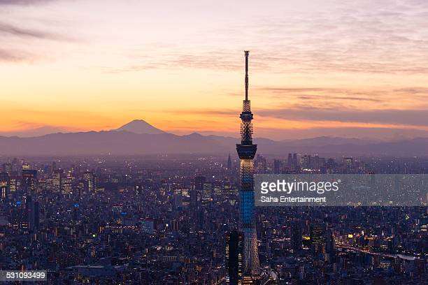 Tokyo Sky Tree light up and Mt' Fuji Aerial view
