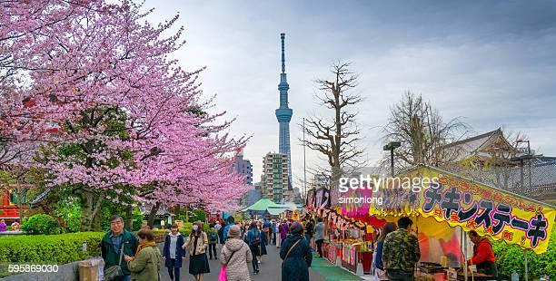 Tokyo Sky tree Tower view from Asakusa Sensoji Temple