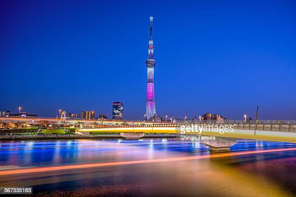 Tokyo Sky Tree with Illuminated Bridge