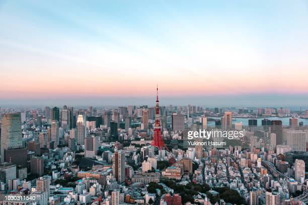 tokyo skyline at dusk - roppongi hills stock pictures, royalty-free photos & images