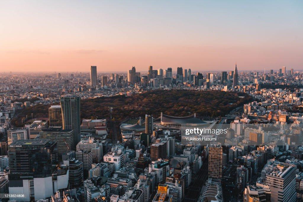 Tokyo skyline at dusk : ストックフォト