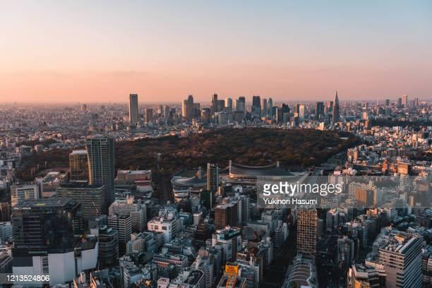 tokyo skyline at dusk - 新宿区 ストックフォトと画像