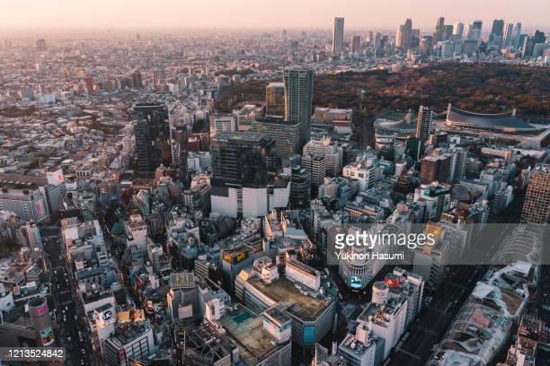 tokyo skyline at dusk - 東京都庁舎 ストックフォトと画像