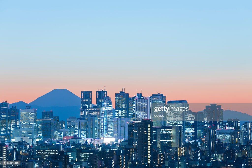 夕暮れ時の東京の街並み : ストックフォト