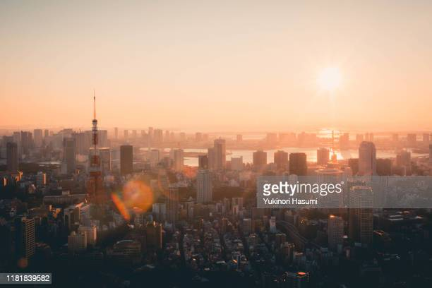 tokyo skyline at early morning - tokyo japan stock pictures, royalty-free photos & images