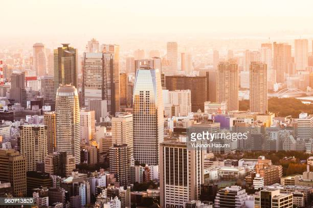 Tokyo skyline at early morning