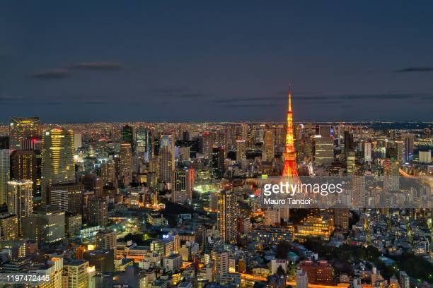 tokyo skyline at night - mauro tandoi stock photos and pictures