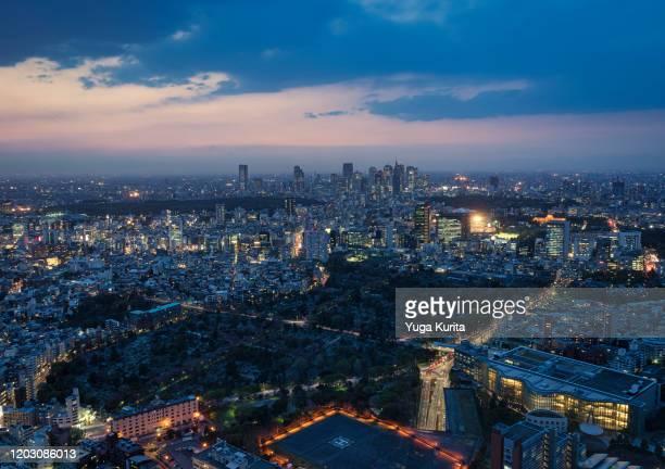 tokyo skyline at night (skyscrapers in shinjuku) - 代々木 ストックフォトと画像