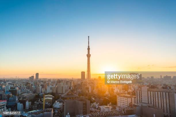 tokyo skyline at sunrise - sunrise dawn stock pictures, royalty-free photos & images