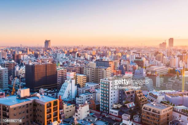 tokyo skyline at sunrise - 夜明け ストックフォトと画像