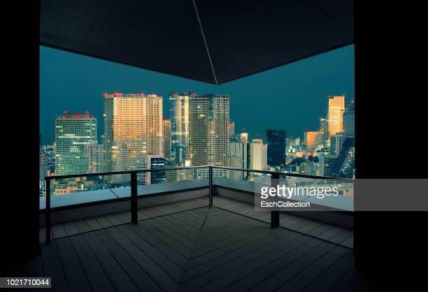 Tokyo skyline at sunset, Japan