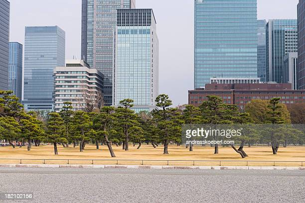 Tokyo skyline behind trees in a small park